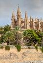 Palma cathedral of de majorca Stock Photos