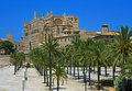 Palma Cathedral with palms, Majorca Royalty Free Stock Photos