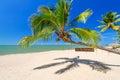 Palmeira tropical na praia da ilha de koh kho khao Imagens de Stock Royalty Free