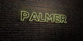 PALMER -Realistic Neon Sign on Brick Wall background - 3D rendered royalty free stock image