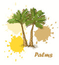 Palms background Royalty Free Stock Images