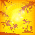 Palms background in yellow summer color vector illustration Royalty Free Stock Photography