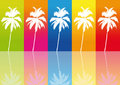 Palms on differently background Stock Images