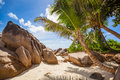 Palms at la digue beach and granite rocks the of Royalty Free Stock Image