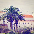 Palms in logos view to historic center city of portugal instagram effect Royalty Free Stock Photography