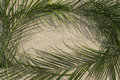 Palms on sand for Palm Sunday Royalty Free Stock Photo