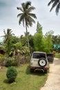 Palms and suzuki caribbean gold phuket thailand Royalty Free Stock Photo