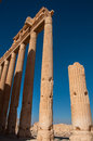 Palmyra syria the ruins of the ancient city before the war photo taken october Stock Photography