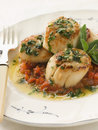 Pan Fried Scallops Piperade and Garlic Butter Stock Photos