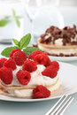 Pancakes with curd cheese and raspberries Stock Photography