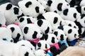 Panda baby toy in china Stock Photo