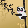 Panda and Bamboo Stock Photography
