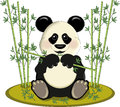 Panda with bamboo Stock Image