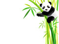 Panda on bamboo Royalty Free Stock Photos