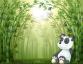 A panda in the bamboo forest illustration of Royalty Free Stock Images