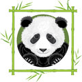 Panda bamboo frame illustration Royalty Free Stock Photo