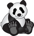 Panda Bear Stock Image