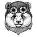 Panda bear, bamboo bear wearing aviator hat Motorcycle hat with glasses for biker Illustration for motorcycle or aviator