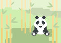 Panda Bear Flat Design Cartoon...