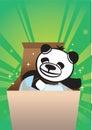 Panda bear gift box Royalty Free Stock Photos