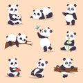 Panda cartoon character in various expression vector animal white cute china black panda bear giant mammal fat