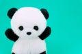 Panda doll black and white, black rim of eyes,panda toy for children on green Royalty Free Stock Photo