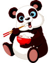 Panda eating rice Royalty Free Stock Images