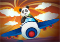 Panda flying in air plane Royalty Free Stock Image