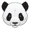 Panda a hand drawn ink illustration of a pandas head Stock Photos