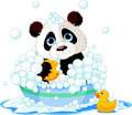 Panda having a bath Royalty Free Stock Photo