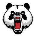 Panda head mascot Royalty Free Stock Photo