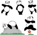 Panda  set 1 Stock Photos
