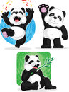 Panda set happy waving hand eating bamboo a vector image of a cute cartoon of in several poses drawn in cartoon style this vector Stock Photo
