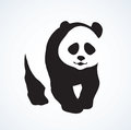Panda. Vector drawing