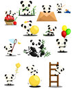 Panda vector set Photo libre de droits