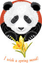 Panda with yellow crocuses illustration Royalty Free Stock Image