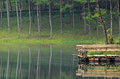 Pang Ung, Beautiful forest lake in the morning Stock Photography