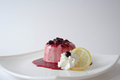 Panna cotta with berries Stock Images