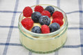 Panna cotta dessert with vanilla pudding and fresh berries Stock Photography