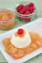 Panna cotta with rhubarb compote Stock Photography