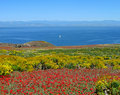 Panorama, Anacapa Island Stock Photos