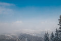 Panorama of the Carpathian mountains. Snowy and wooded peaks and tall fir-trees Royalty Free Stock Photo
