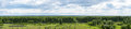 Panorama of green trees and blue sky Royalty Free Stock Photo