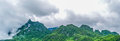 Panorama Landscape. Green nature landscape of asphalt road Royalty Free Stock Photo
