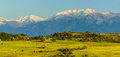 Panorama landscape with mountains and sheep flock in transylvania romania Stock Photo
