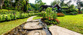 Panorama Landscaping in the garden. Royalty Free Stock Photo