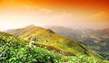 Panorama mountain sunset in thailand for background design Stock Photo