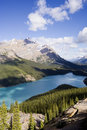 Panorama of the peyto lake Stock Photos
