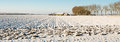 Panorama picture of a plowed field covered with snow Royalty Free Stock Photo