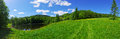 Panorama with pond and green meadow Stock Images